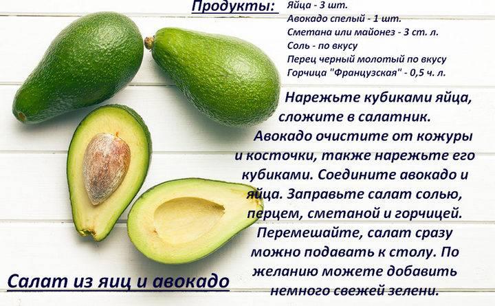 Польза и вред авокадо для организма человека