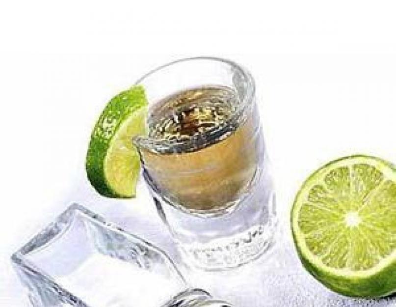 Как правильно пить текилу: чем закусывать и во что наливать