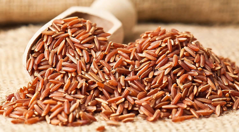Белый, бурый, красный, черный рис: польза и вред, калорийность уникального злака. все о пользе и вреде риса для организма