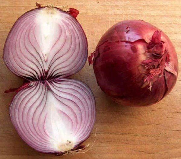 Зеленый лук: польза и вред для здоровья