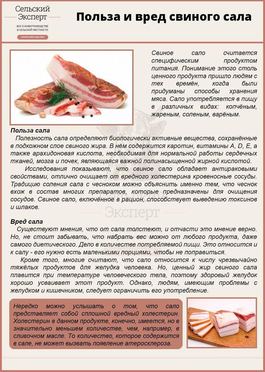 Свиной жир польза и вред для здоровья. лечение свиным внутренним жиром