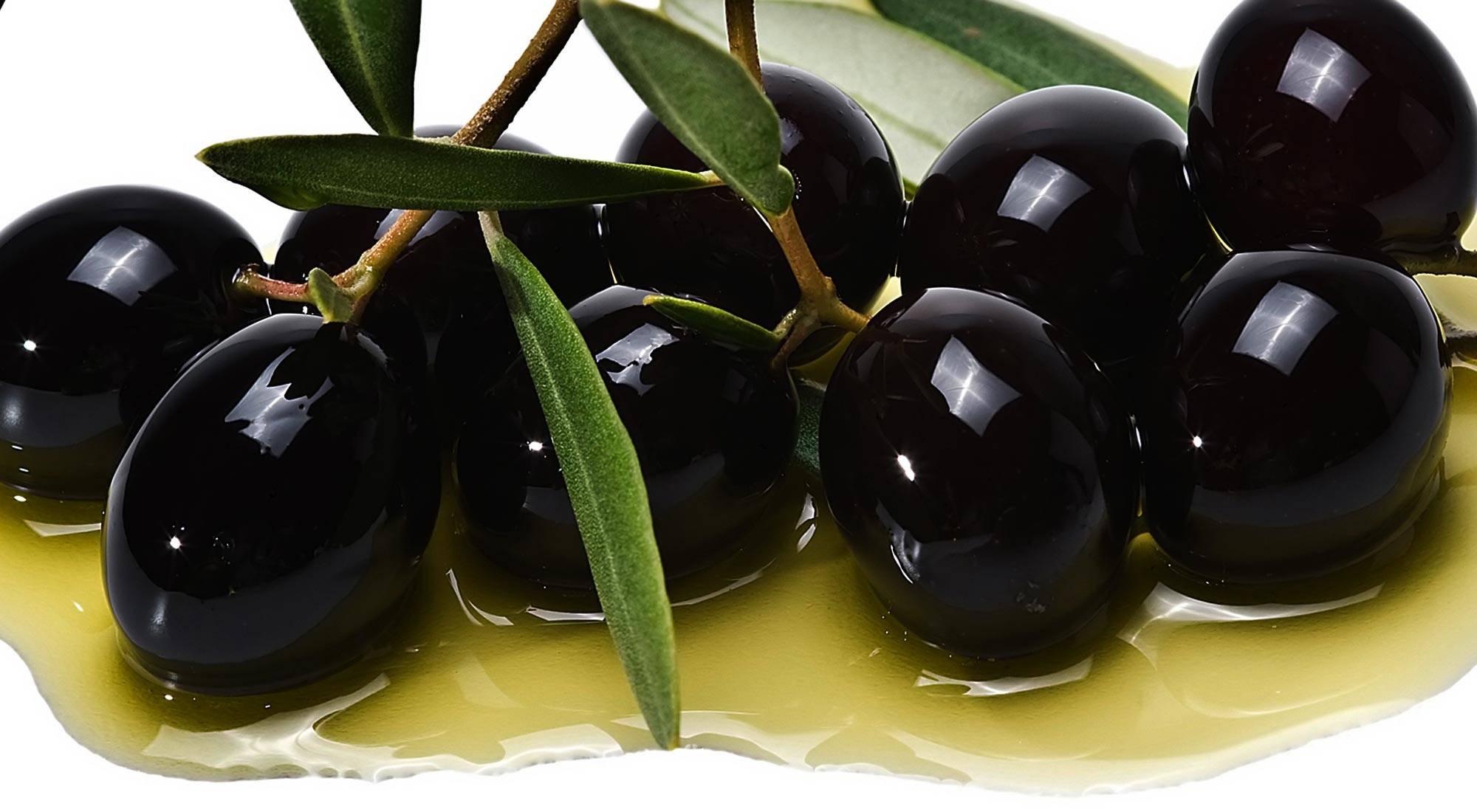 Польза оливок для организма