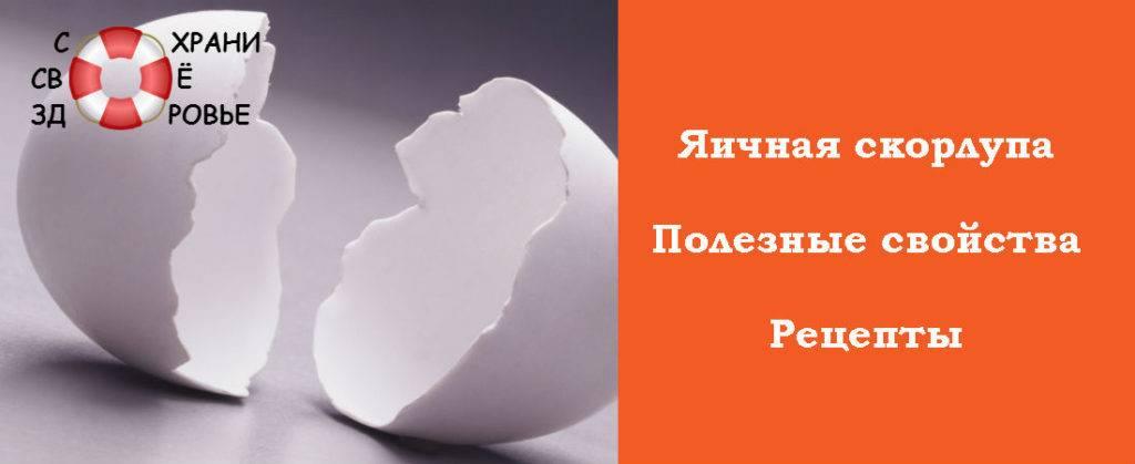 Цена выеденного яйца вред и польза яичной скорлупы