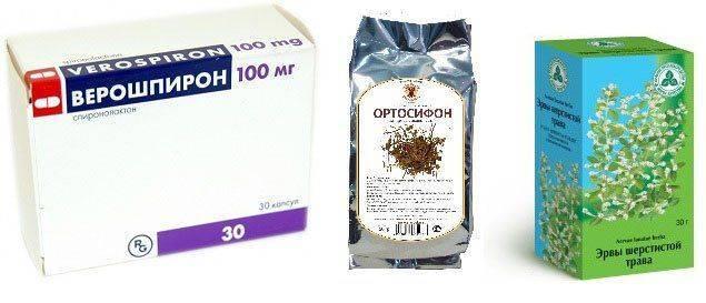 Верошпирон, чай Ортосифон, Эрвы Шерстистой трава