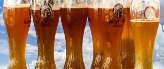 Много бокалов с пивом
