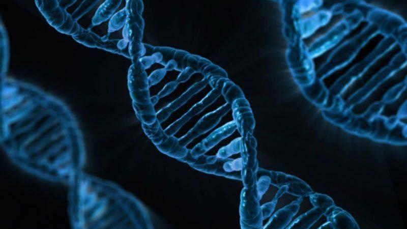 Существует ли генетическая предрасположенность к алкоголизму?