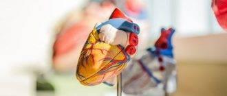 Сердце на ножке