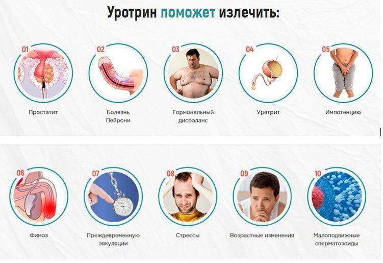Уротрин для лечения распространенных болезней мужчин