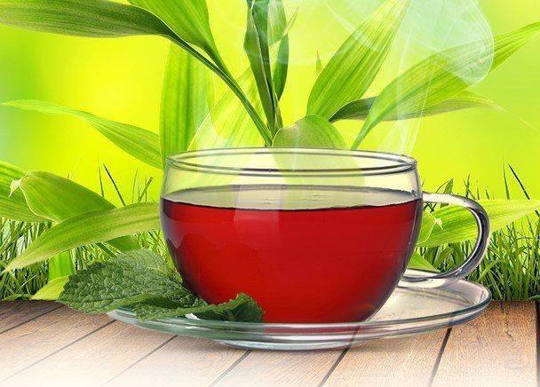 Монастырский чай от диабета — состав и реальные отзывы