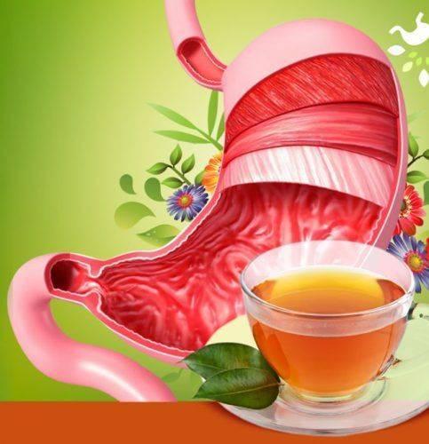 Травяной сбор для лечения желудка