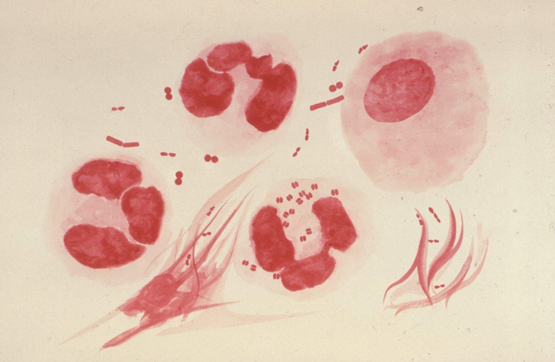 Женские гениталии в сперме в бане — pic 4