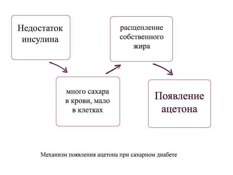 Схема появления ацетона