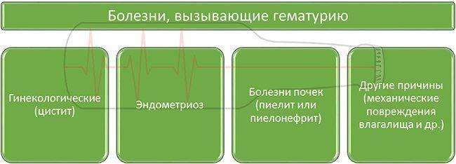 Болезни, вызывающие гематурию