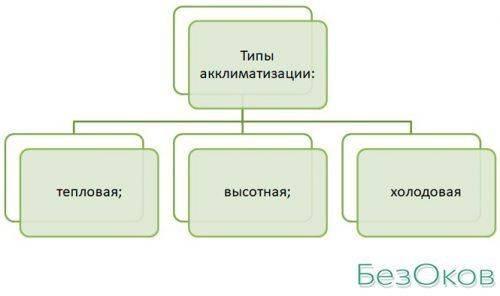 Типы акклиматизации