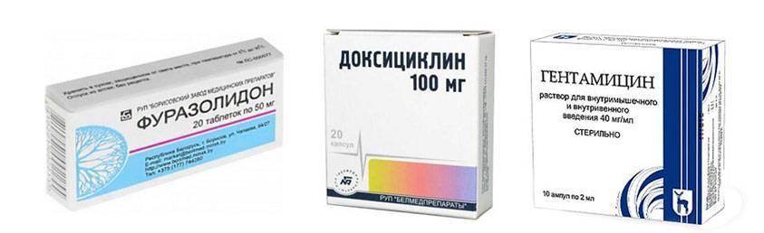 Фуразолидон, Доксициклин, Гентамицин