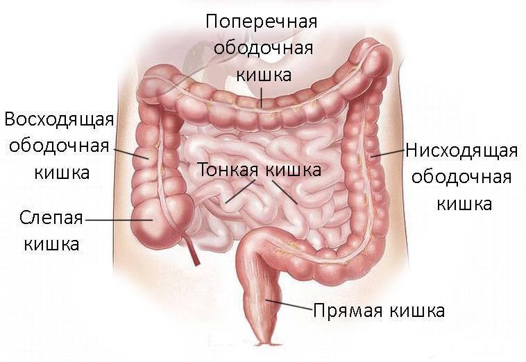 Геморройная шишка