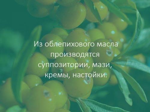 Препараты из облепихового масла