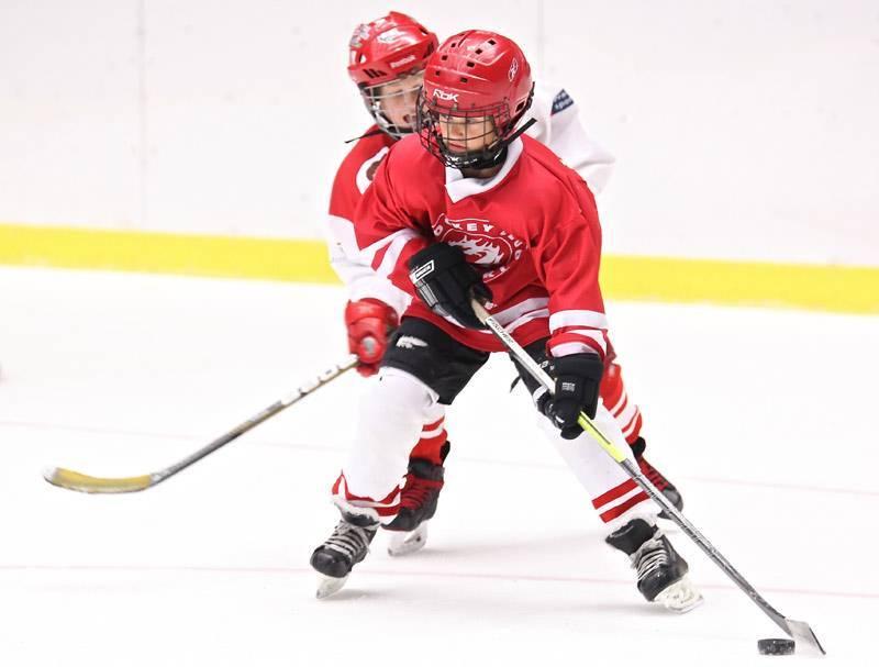 Польза и вред хоккея