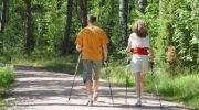 Польза и вред скандинавской ходьбы, противопоказания, советы