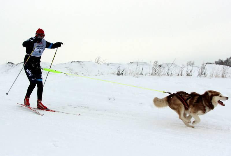 Топ 12 необычных зимних видов спорта