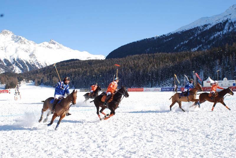 Конное поло в снегу