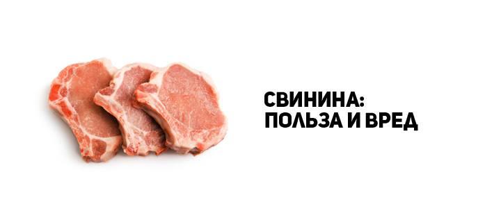 Можно ли есть свинину каждый день. польза и вред свинины