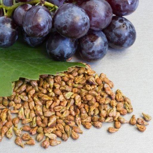 Виноград нужно есть с косточками или без