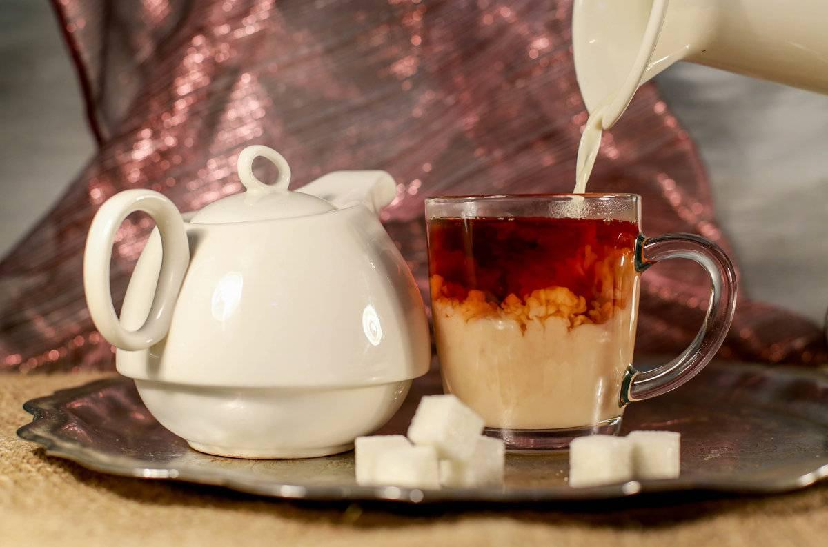 Чай с молоком: польза и вред для организма человека