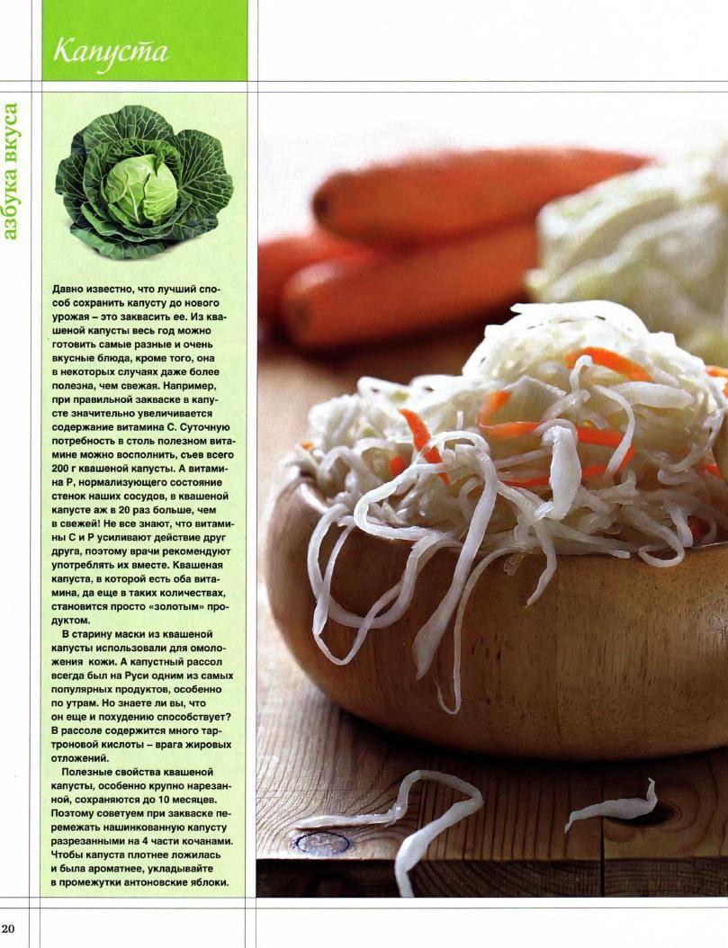 Польза квашеной капусты для организма человека
