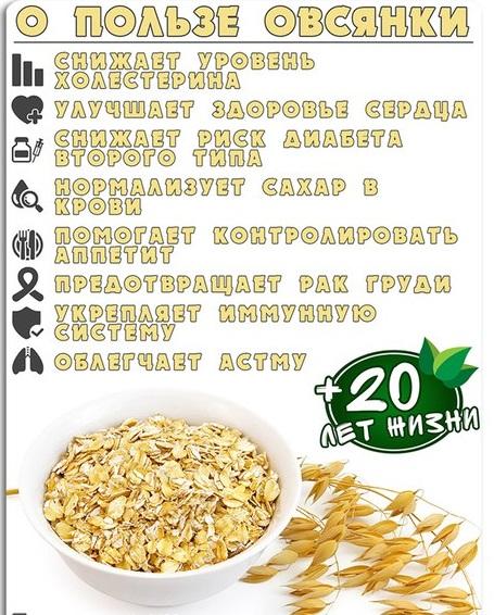 Польза и вред овсяной каши: рецепты для лечения, похудения и оздоровления