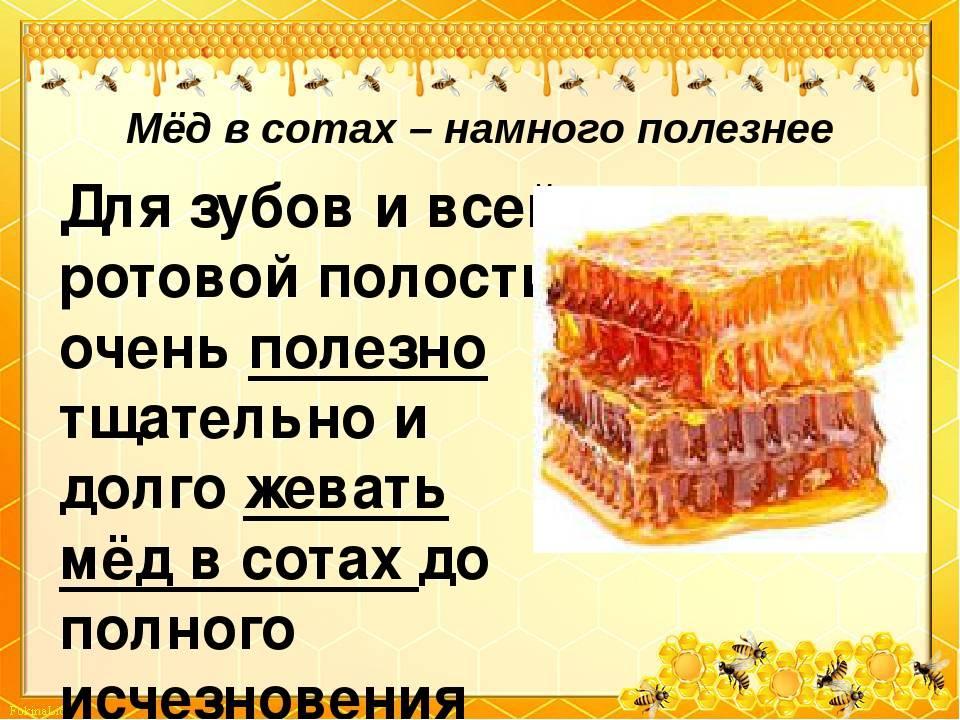 Чем полезен мед в сотах, как употреблять, можно ли есть соты