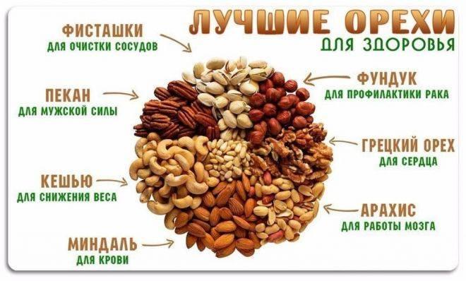 Самые полезные орехи: 9 видов и их свойства