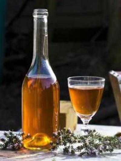 Медовуха: вред и польза медового напитка для здоровья