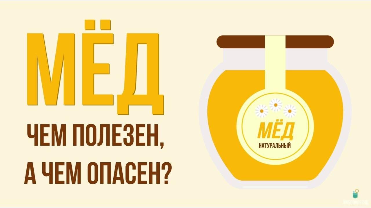 Чем полезен мед для организма человека?