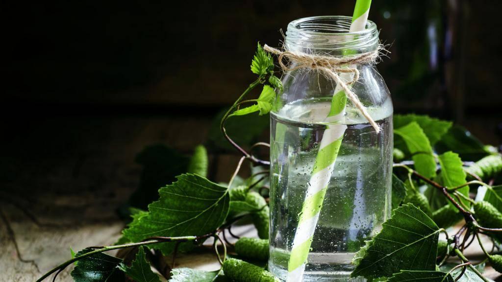 Березовый сок: польза и вред, как сохранить его