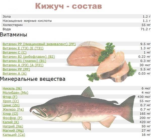 Есть рыбу каждый день - результаты. топ 10 самых полезных и доступных сортов рыбы