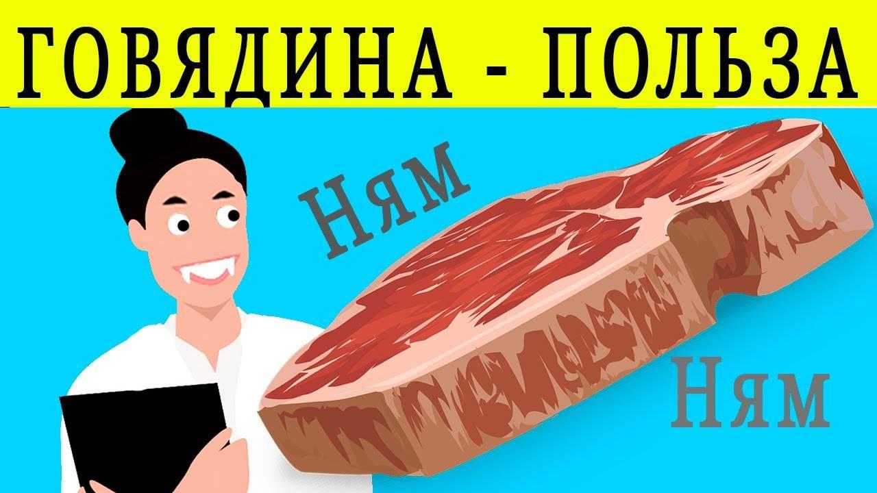 Сочная говядина: польза и вред красного мяса. так ли полезна говядина, кому она полезна и чем вреден говяжий стейк