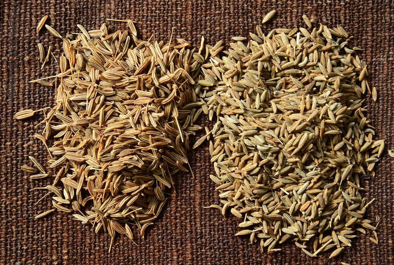 Приправа зира, как ее правильно применять, в какие блюда добавлять. химический состав и полезные свойства специи