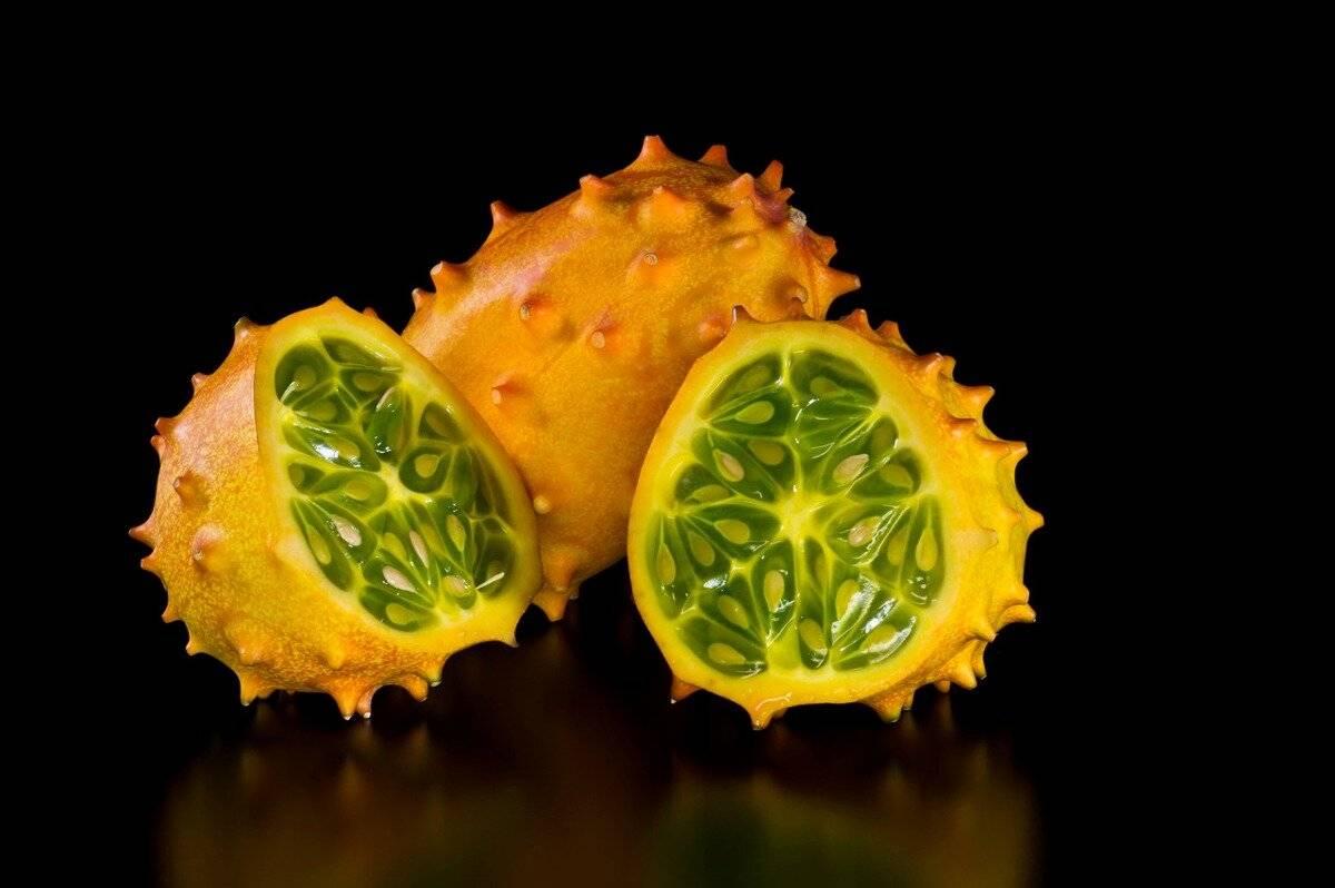 Кивано — экзотический фрукт