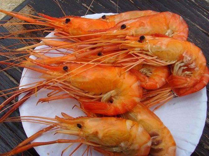 Морепродукты при грудном вскармливании: что можно, что нельзя?