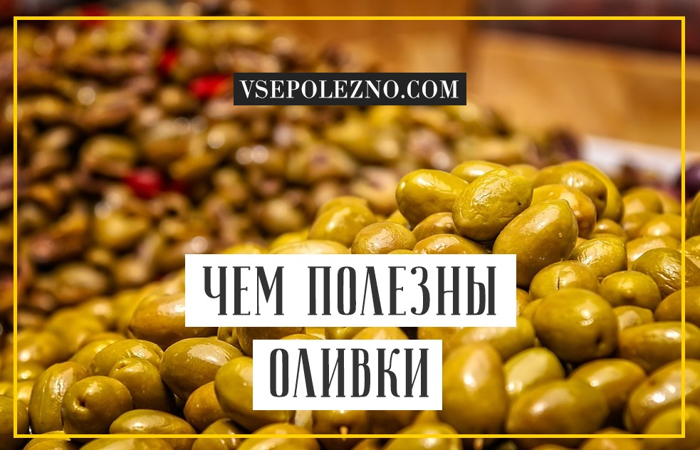 Маслины: полезные свойства. польза и вред маслин