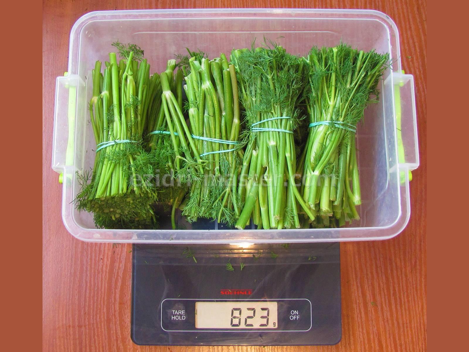 Как сушить зелень в сушилке для овощей