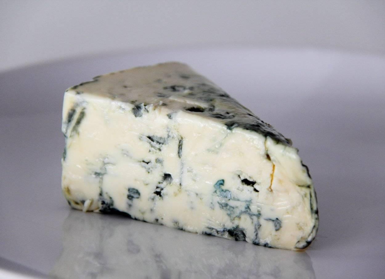 Сыр с плесенью — польза и вред изысканного продукта
