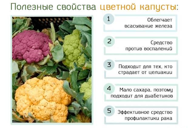 В чем заключается польза и вред цветной капусты?