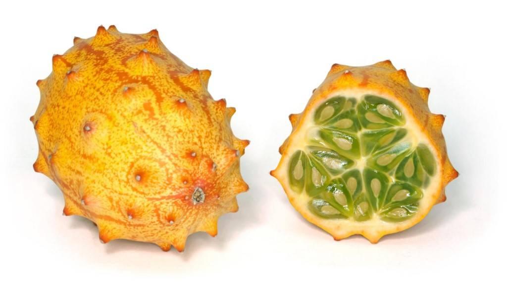 Что за фрукт рогатая дыня или африканский огурец. кивано - какими полезными свойствами обладает этот фрукт