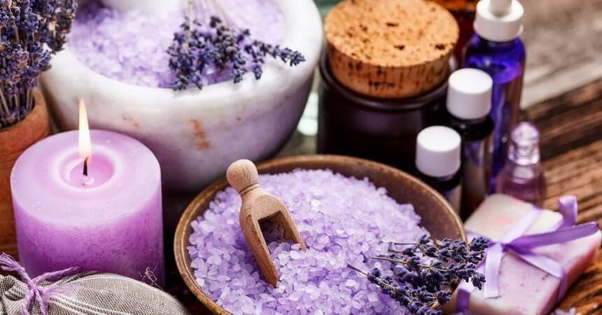 Лаванда — полезные свойства и противопоказания, применение в народной медицине