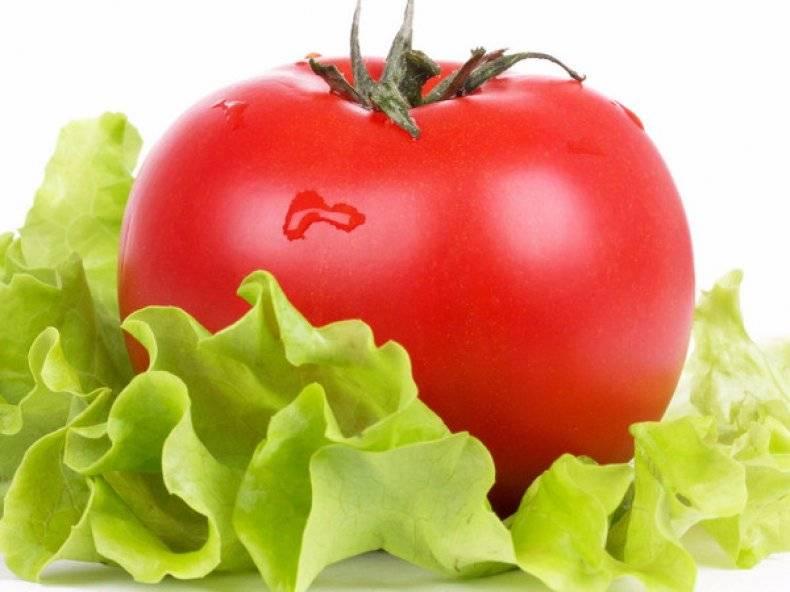 Зеленые помидоры польза и вред для организма. польза и вред зеленых помидоров или как убрать соланин