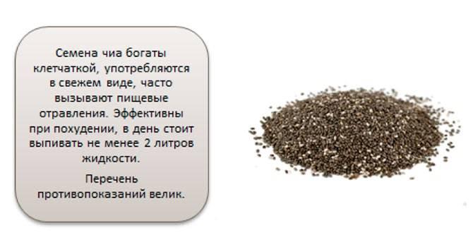 Семена чиа: полезные свойства, противопоказания, польза и вред