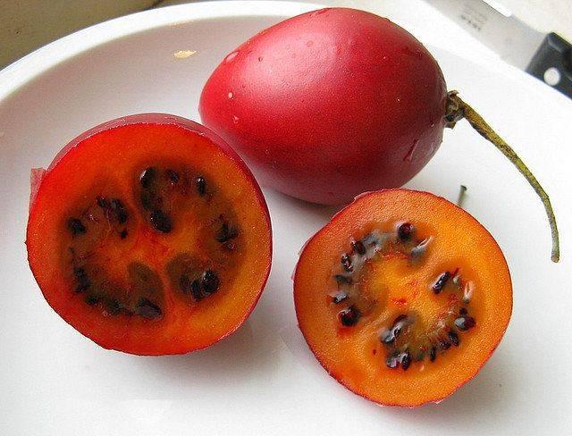 Как едят тамарилло? что это за фрукт?