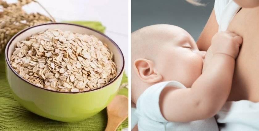 Майонез при грудном вскармливании: можно ли есть и какой нельзя? правила употребления домашнего продукта